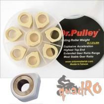 Dr Pulley Variorollen Kymco MXU 300